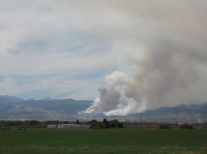 Quick burning grass fire
